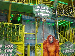 Jungle Fun House For Hire